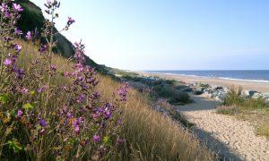 California Cliffs Caravan Holidays